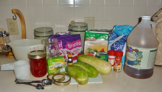 Initial Ingredients for Spiced Cucumber Rings